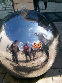 ladybirds struggle with globes