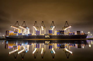 12 Cranes And A Ship - APL WASHINGTON | by Lance Cunningham