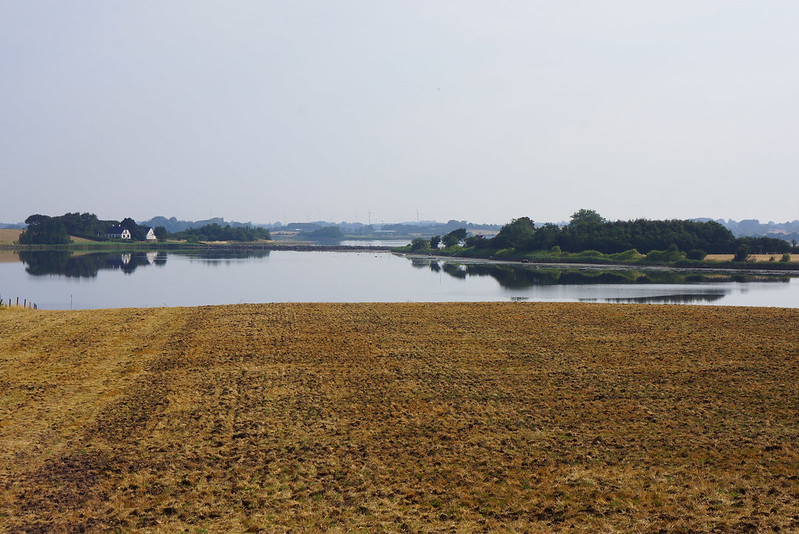 Kaedeby-Haver-2014-07-27 (3)
