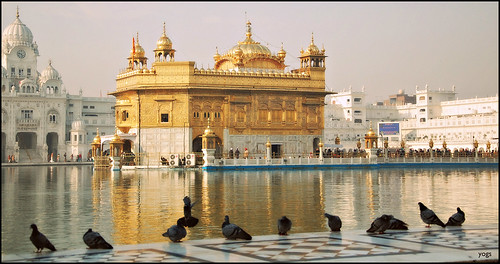 india pool golden divine holy nectar sikh punjab amritsar goldentemple darbarsahib incredibleindia indiantourism harimandir gururamdas amritsarovar harmindarsahib guruarjandev wonderofindia