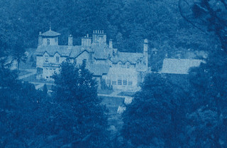 Detail of Landscape - Cyanotype, 1893 *Glenesk House