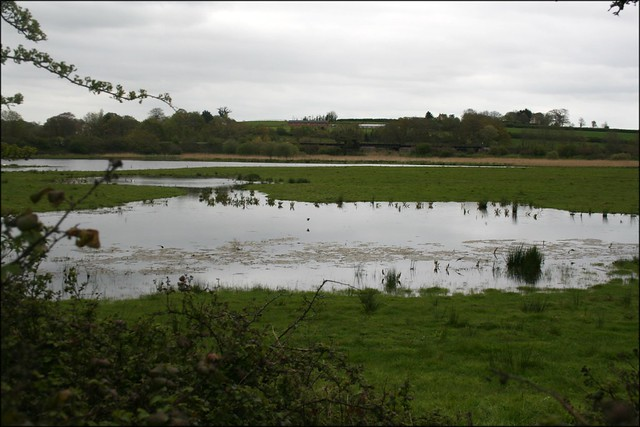 Bowling Green natrue reserve