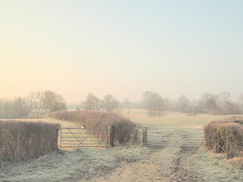 field fence dawn golden gate frost farm landscape trees march spring walk pen olympus ep5 uk england english country path route choice choose morning pasture sunrise hedge hedgerow britain