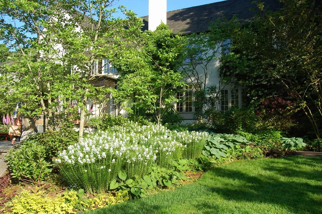 A Pleasure Garden Chanticleer