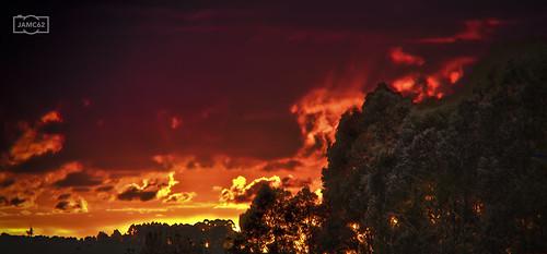 trees sunset red españa beautiful clouds fire photography spain rojo arboles asturias nubes puestadesol fuego