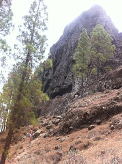 Path to Roque Nublo in Gran Canaria (1.813 m.o.h.)