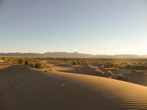 Sand dunes near Mesr | by gorbulas_sandybanks