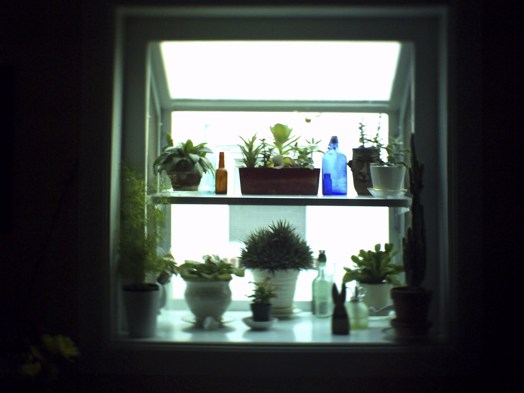 Aunt Suzanne S Kitchen Window Mary Kate Brehm Flickr