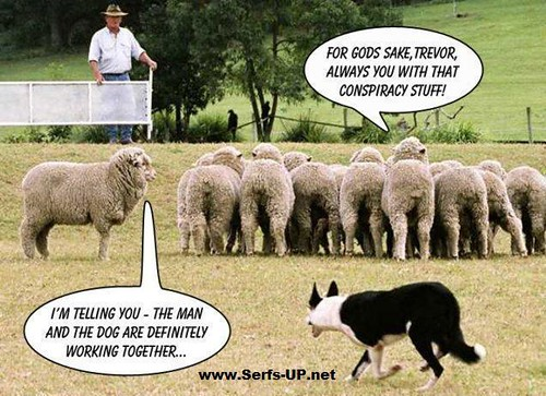 Serfs  Up ! Sheep Conspiracy | by Serfs UP ! Roger Sayles