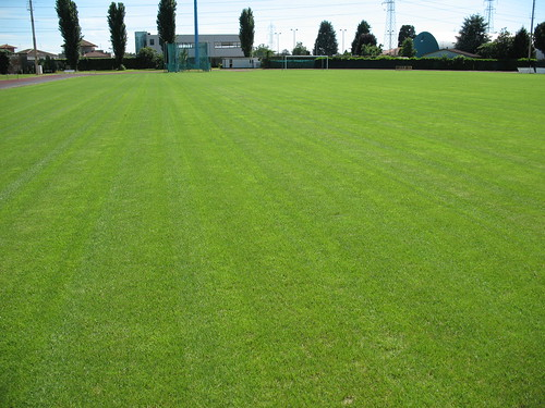 Dopo 18 giugno 2010 | by Sport Turf Consulting