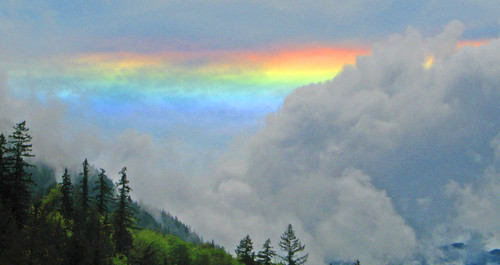 Rainbow Quilcene NFH1 | by USFWS Pacific