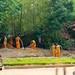 Chiang Mai 2012