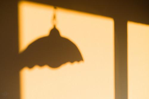 hinge shadow orange wall oregon unitedstates beaverton lampshade tiffanylamp firstlight eggshellwhite uscopyrightregistered2012