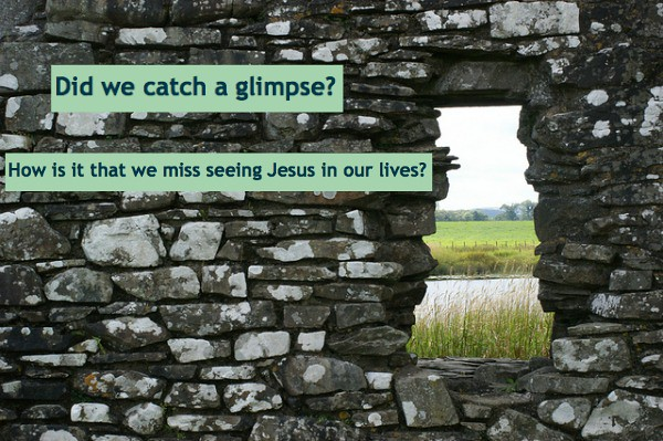 a tiny window in a wall looks out over a field, while asking the question: Did we catch a glimpse