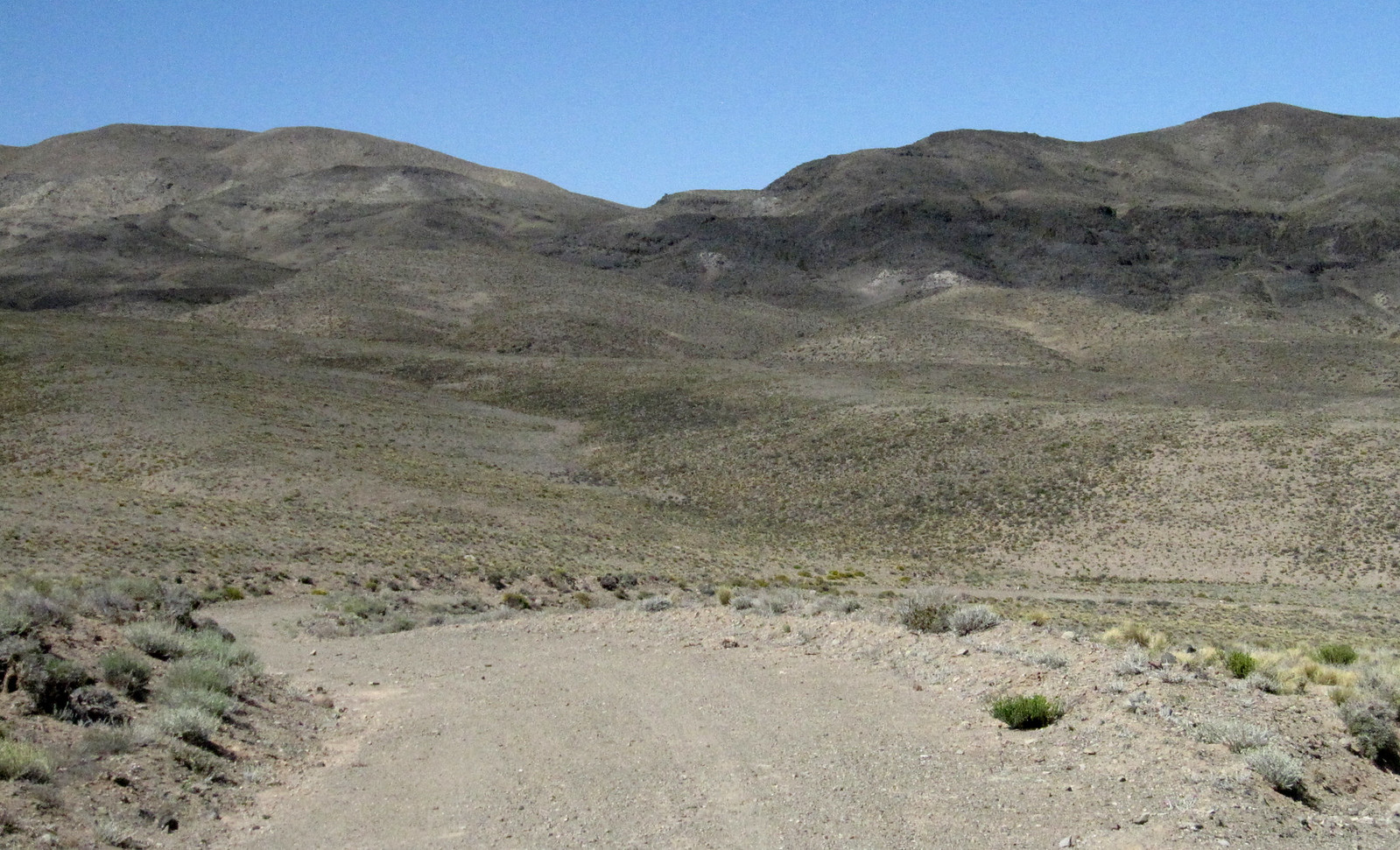 Mendoza 286