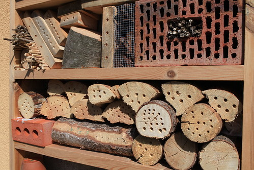 My recent insect hotel | by Alexandre Dulaunoy