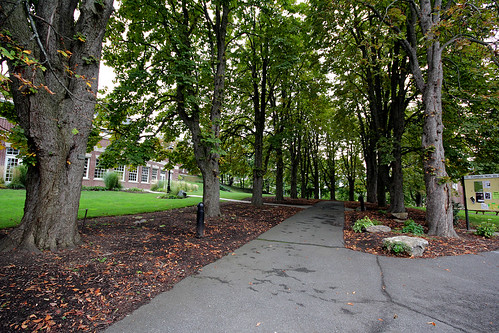 Campus Scene _1052