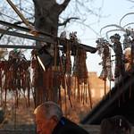 CHINA-2011_1229