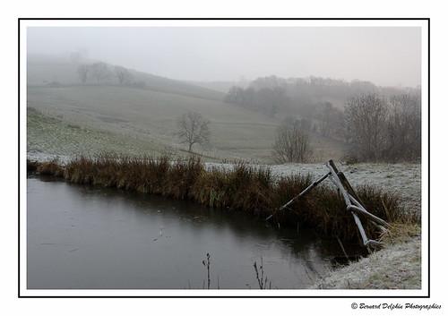 Dans la froidure du petit matin | by bernard.delphin