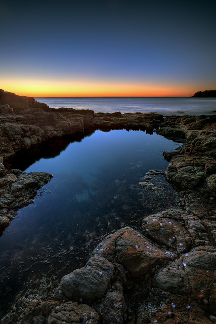 Previous: Illawarra Reflection