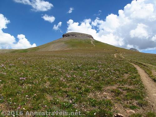Table Mountain, Jedediah Smith Wilderness, Wyoming