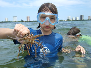 Beau with a spiny lobster
