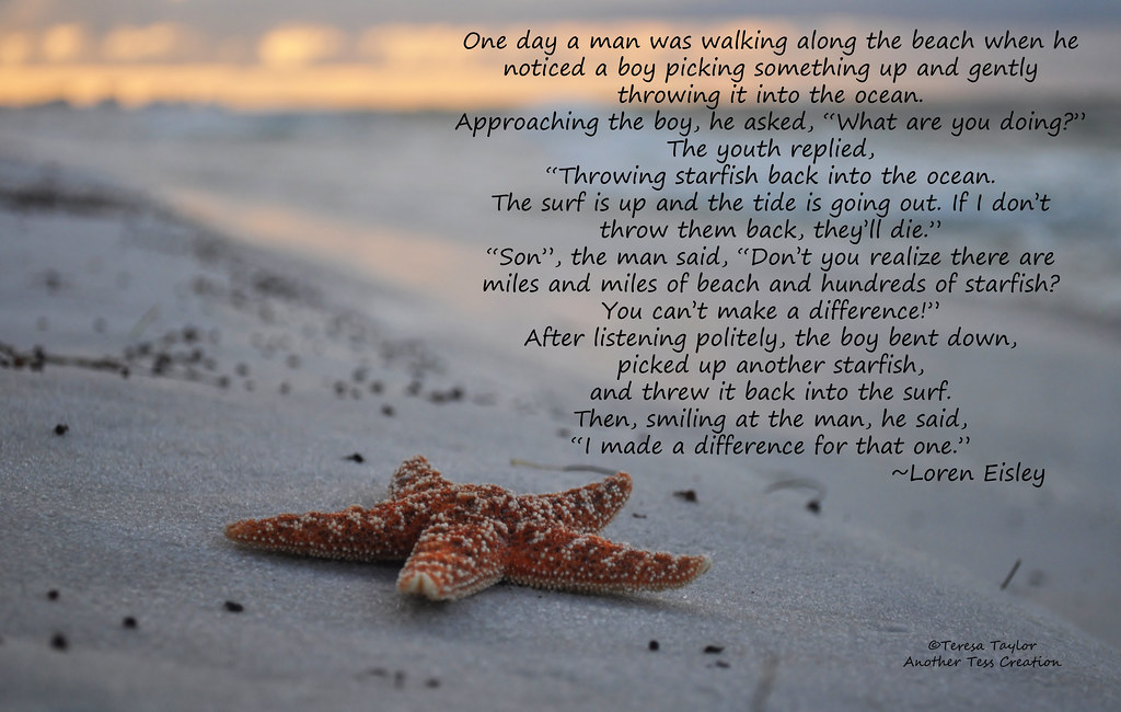 Image result for starfish story