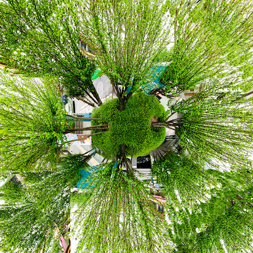street greenleaves tree green art leaves car collage photoshop pattern sony digitalart creative pedestrian ground korea seoul photomontage photomerge layers photocollage cityview bellstreet kaiming jongnogu e6533 kmwhk collageof8photos