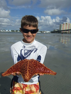 Connor with a cushion starfish. | by AdventureMIke.com