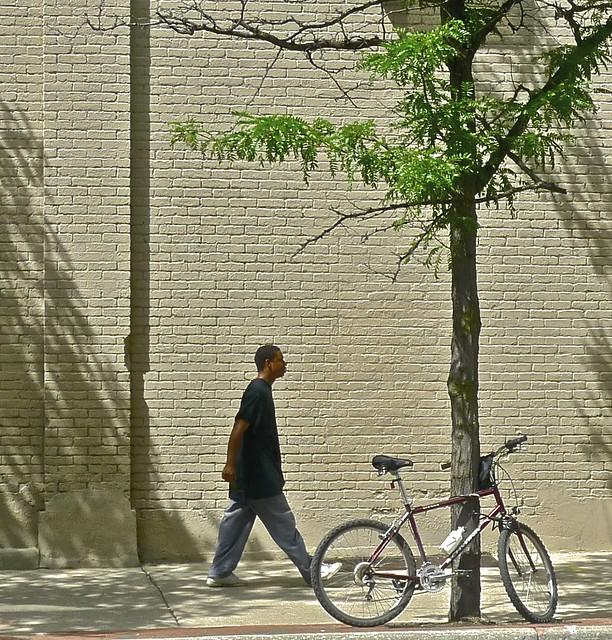 Young Man, Bike, Tree, Wall ... Ann Arbor Michigan