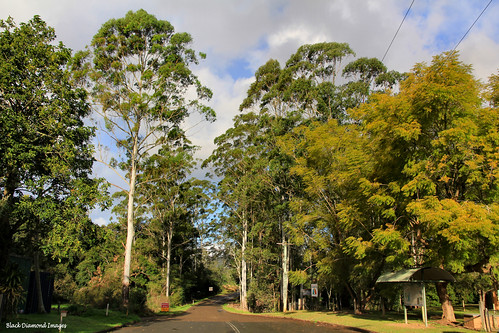 Eastern Exit From Hannam Vale Village, Manning Valley, NSW | by Black Diamond Images