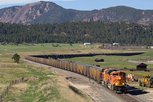 railroad train colorado spruce bnsf rampartrange emd coaltrain sd70ace jointline bnsf9134