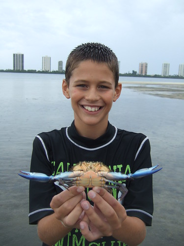 Michael catches another blue crab.