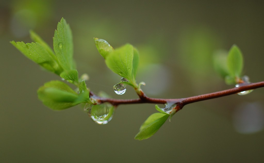○♤° If a drop of water falls in lake, there is no identity