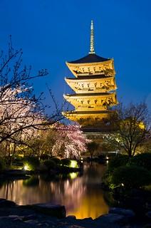 Kyoto   by Máximo Novas