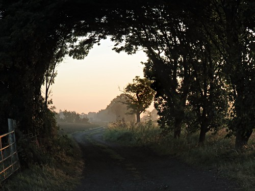 sun nature sunrise bedford dawn horizon scenic bedfordshire explore naturereserve vista felton lumen wildlifetrust explored greensandridge robertfelton greensandridgewalk oldwardentunnel canonpowershotsxxxis oldwardentunnelnaturereserve wildlifetrustforbedfordshirecambridgeshireandnorthamptonshire