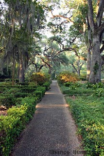 St. Francisville, LA Myrtles Plantation Garden | St ...