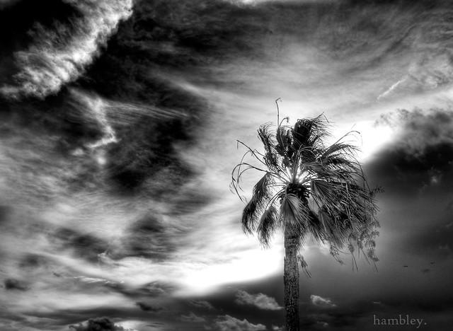 Matagorda sky