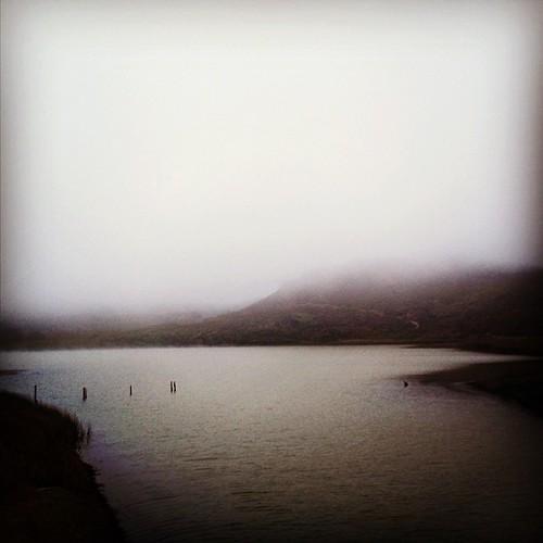lagoon | by sarahwulfeck