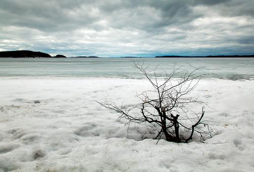 ice landscape spring lappeenranta saimaa joutseno