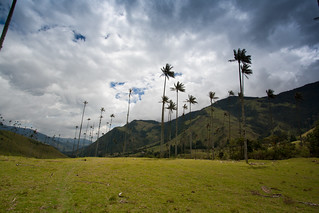 Cocora Valley | by The Colombian Way