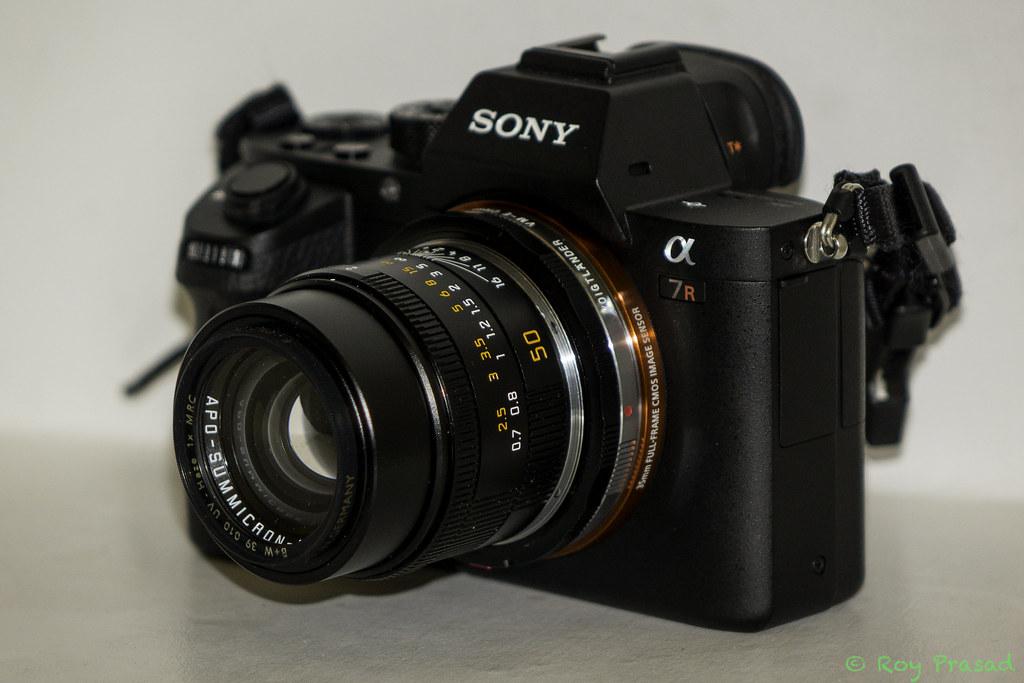 Sony A7R-ii + Leica 50mm APO Summicron-M | Note: Since posti