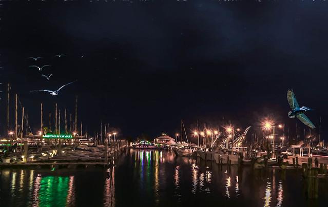The Docks at Night