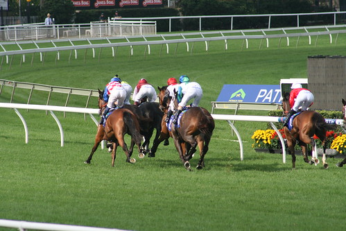 RandwickRaces12_046 | by frigginawesomeimontv