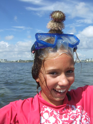 Dahlia balancing sea urchins.