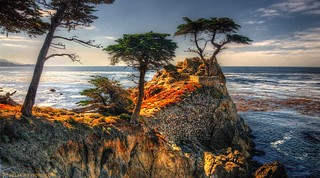 Pebble Beach Icon | by Charlie Stinchcomb