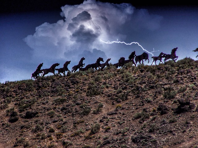 Wanapum Lake ~ Washington State ~ Wild Horses ~ Grandfather Cuts Loose the Poines ~ Attraction Site
