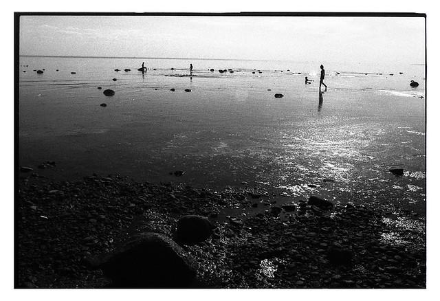 Komarovo beach