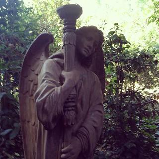 an angel. | by sarahwulfeck