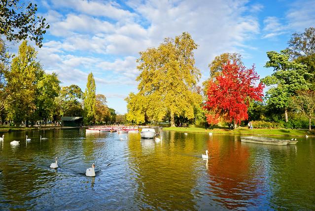 Bois de Vincennes - Lac Dausmenil